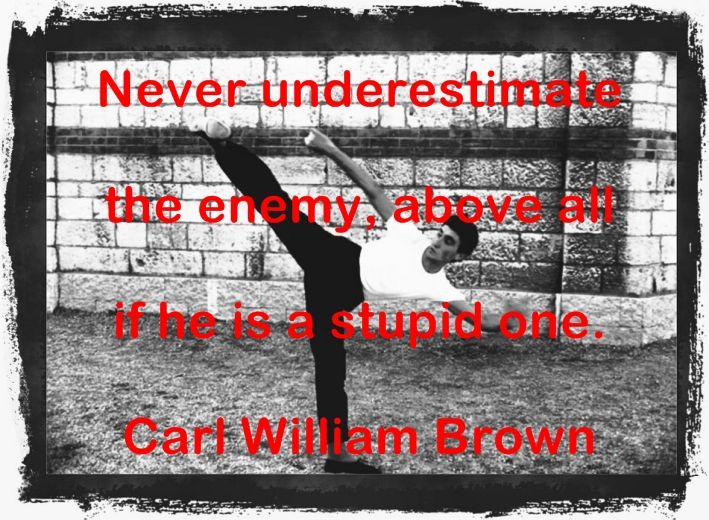 Carl William Brown Quotes (Part 2)