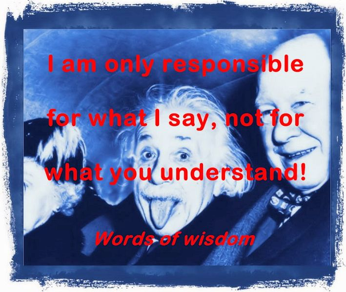 I am only responsible for what I say
