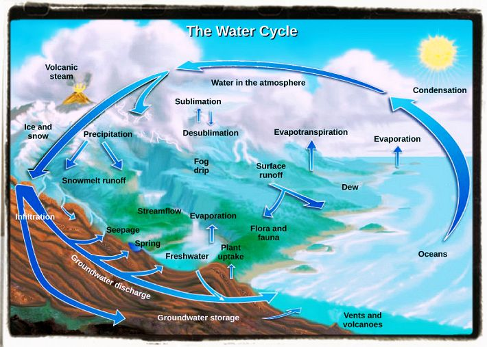 Water Cycle and Weather Forcast
