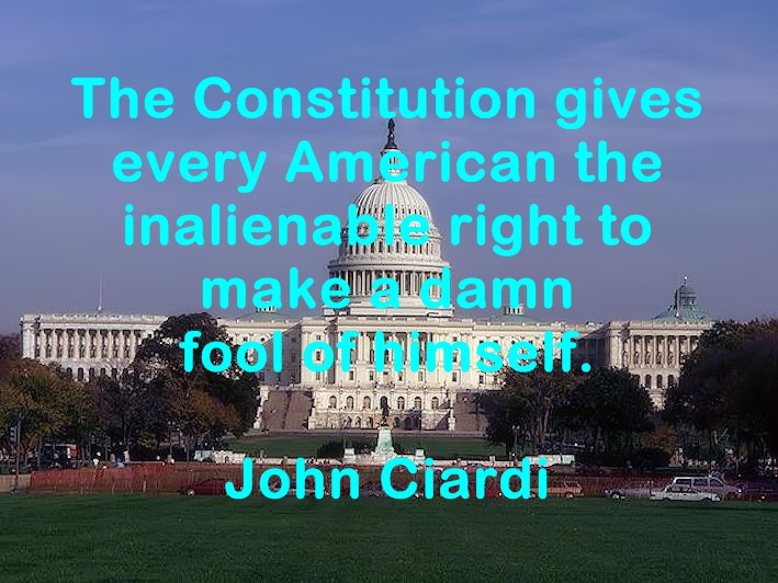 The Constitution gives every American the inalienable right to make a damn fool of himself. John Ciardi