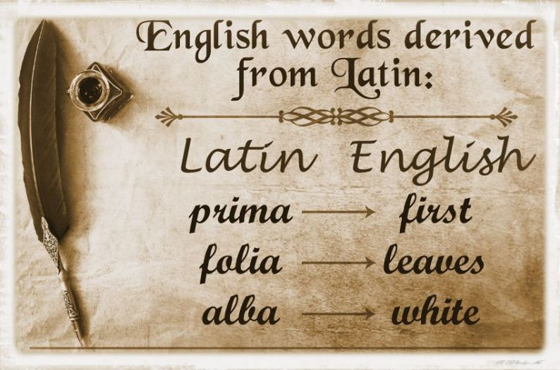 Latin influence on English