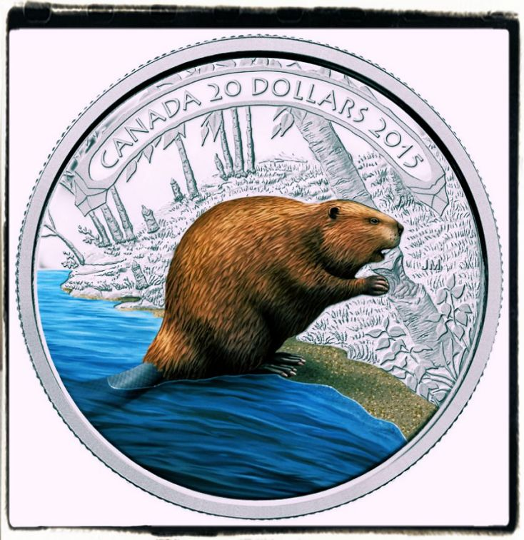 Canadian Beaver Coins