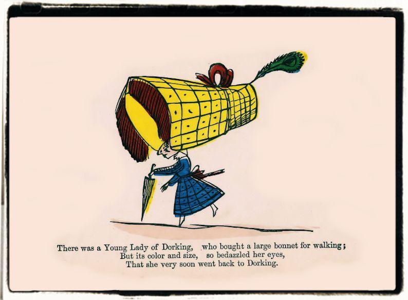 The nonsense limerick book