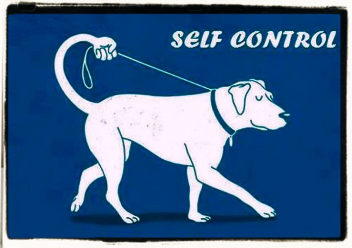 Self-control quotes and aphorisms