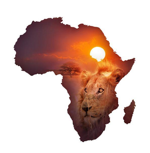 African words of wisdom