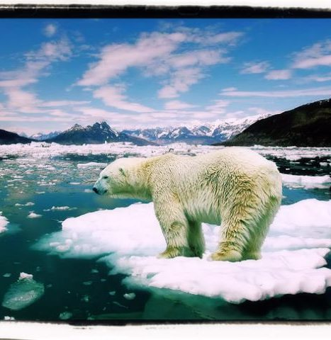 Environment climate question